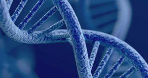 detalle de ADN.