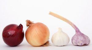 cebollas y verduras similares.